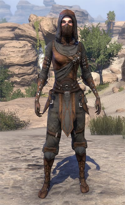 Thieves Guild Outfit
